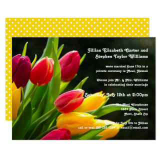 Colorful Tulips Photo - Wedding Announcement