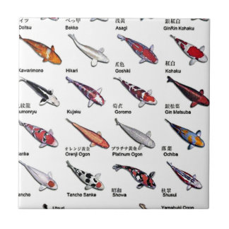 Colorful Varieties of Koi Fish Drawing Pattern Small Square Tile