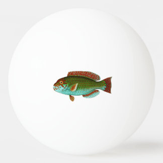 Colorful Vintage Fish Ping Pong Ball