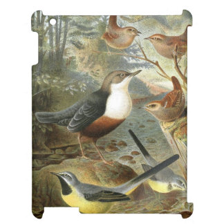 Colorful vintage illustration of birds case cover for the iPad 2 3 4