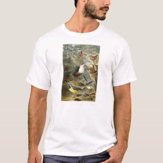 Colorful vintage illustration of birds shirt