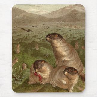 Colorful vintage marmot illustration mousepad