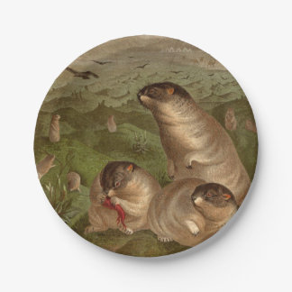 Colorful vintage marmot illustration paper plate 7 inch paper plate
