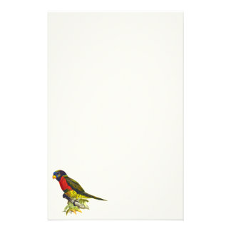 Colorful vintage parrot illustration customized stationery