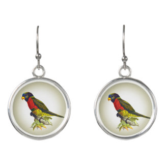 Colorful vintage parrot illustration earrings