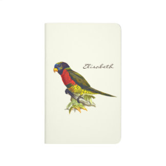 Colorful vintage parrot illustration journals