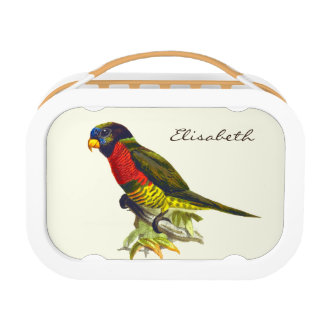 Colorful vintage parrot illustration lunch box