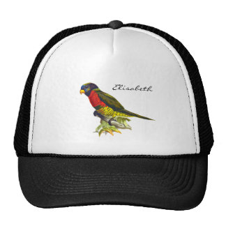 Colorful vintage parrot illustration name cap