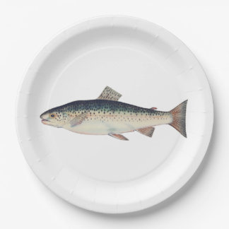 Colorful vintage salmon illustration 9 inch paper plate