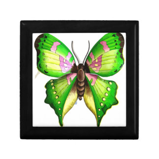 Colorfull Butterfly Small Square Gift Box