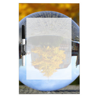 Colors of Autumn Gingko tree, crystal ball Dry Erase Whiteboards
