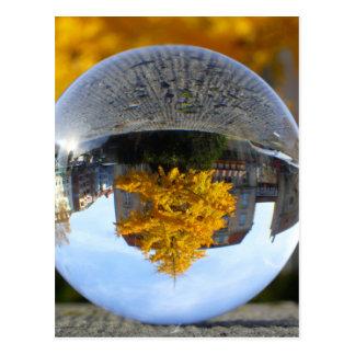 Colors of Autumn Gingko tree, crystal ball Postcard