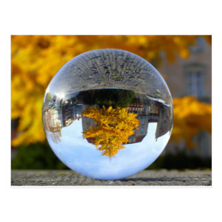 Colors of Autumn Gingko tree, crystal ball Postcard