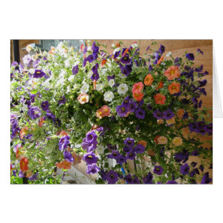 Colors Of Petunias, Thinking of You Prayer Card