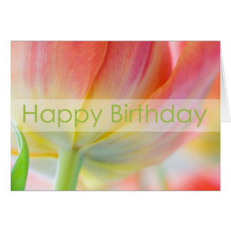 Colors of Spring Birthday Card