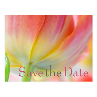 Colors of Spring Tulip Save the Date Postcard