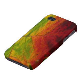Colors of the Maple Leaf Autumn Nature Photography iPhone 4/4S Covers