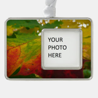 Colors of the Maple Leaf Autumn Nature Photography Silver Plated Framed Ornament