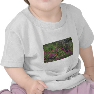 Colors Of The Wild Tee Shirt