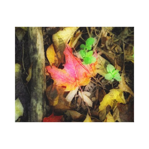 Colors off fall gallery wrapped canvas