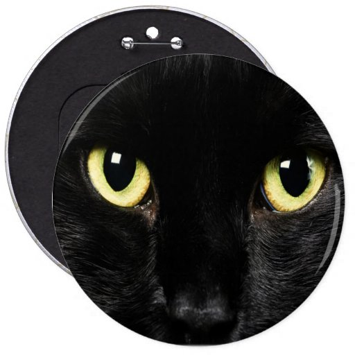 COLOSSAL Black Cat  Pinback Buttons Backpack Pins