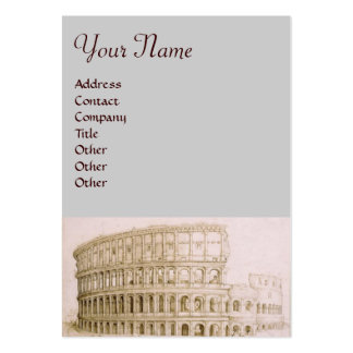 COLOSSEUM / Architecture Pack Of Chubby Business Cards