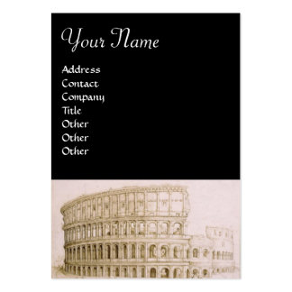 COLOSSEUM PACK OF CHUBBY BUSINESS CARDS