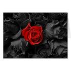 Colour Burn Rose Valentine Card