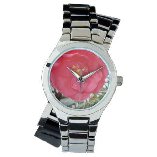 Colour Burst Of A Pink Camellia, Silver Watch. Watch