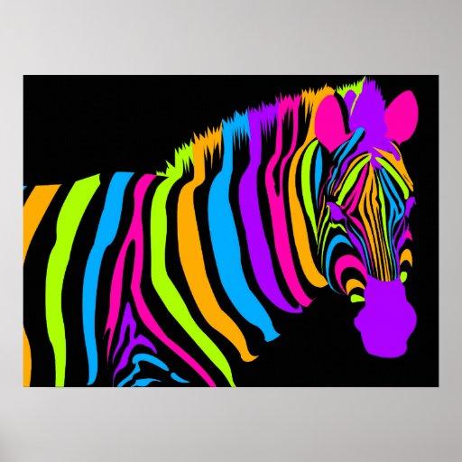 Colour Burst Zebra Poster