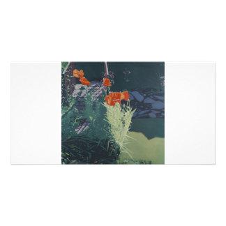Colour fine art illustrated photocard custom photo card