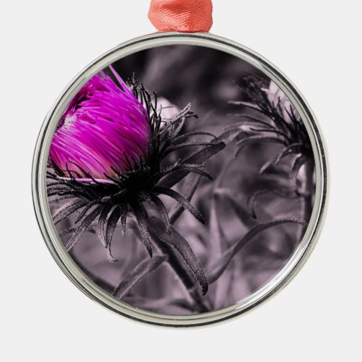 colour flower with black and white christmas ornaments