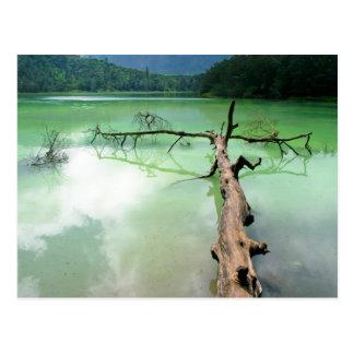 colour lake postcard