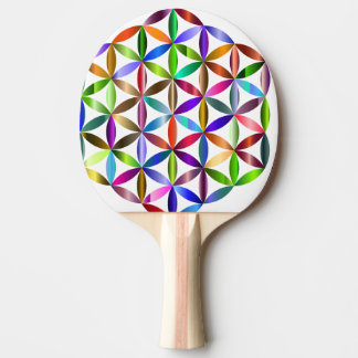 colour ping pong paddle