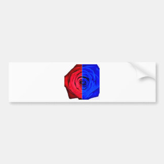 Colour Rose Bumper Sticker