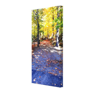 Coloured Autumn Path Canvas Canvas Print