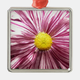 coloured Flower Close up Christmas Ornament