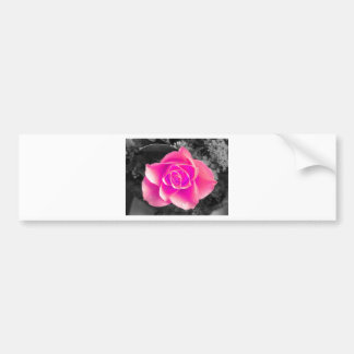 Coloured Flower Design Bumper Sticker