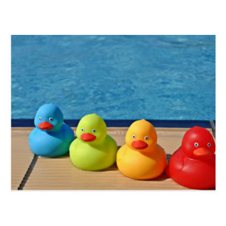 Coloured Rubber Ducks Postcard