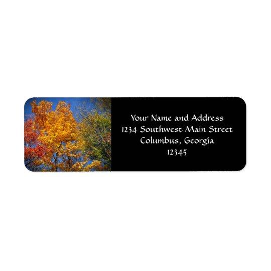 Colourful Autumn Trees