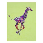 colourful baby giraffe poster