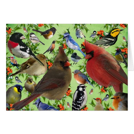 Colourful Bird Collage Card