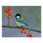 Colourful bird with red/orange flowers poster
