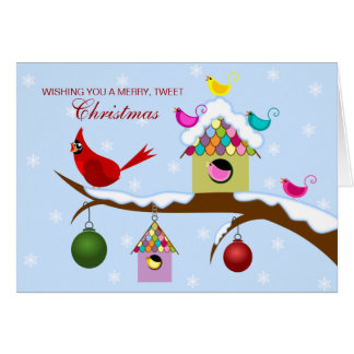 Colourful Birds Christmas Holiday Greeting Card
