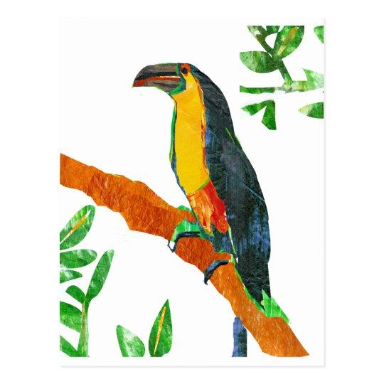 Colourful  Birds Toucan Postcard