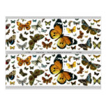 Colourful Butterflies Antiquarian Image Bookmark