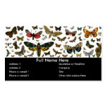 Colourful Butterflies Antiquarian Image Bookmark Business Card