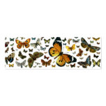 Colourful Butterflies Antiquarian Image Bookmark Business Card Template