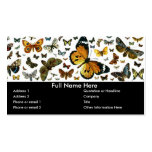Colourful Butterflies Antiquarian Image Bookmark Pack Of Standard Business Cards