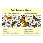 Colourful Butterflies Antiquarian Image Bookmark Business Card Templates
